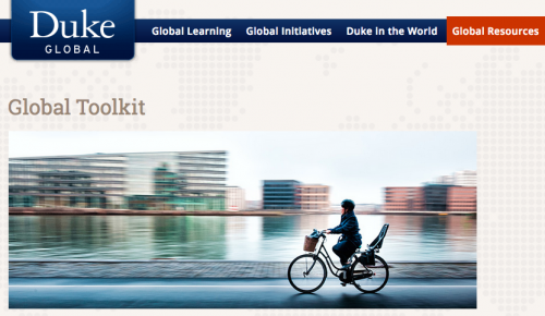 Screen shot from the Duke Global Toolkit website.