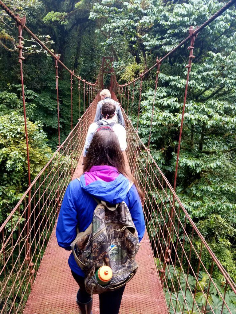View of people walking across rope bridge in rainforest
