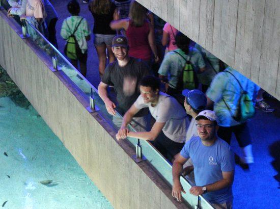 students at aquarium