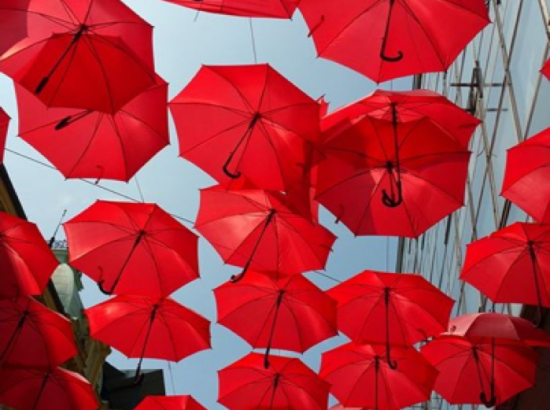 Art display of red umbrellas suspended in the air