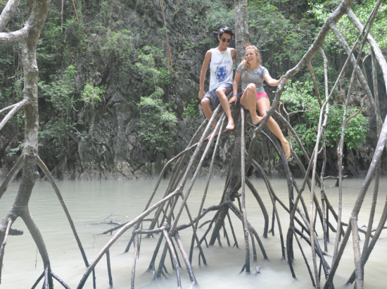 Two people sit on tree branches above a body of water.