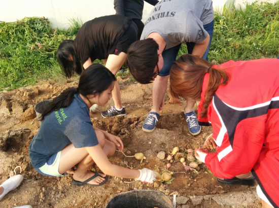 Students work outside planting vegetables