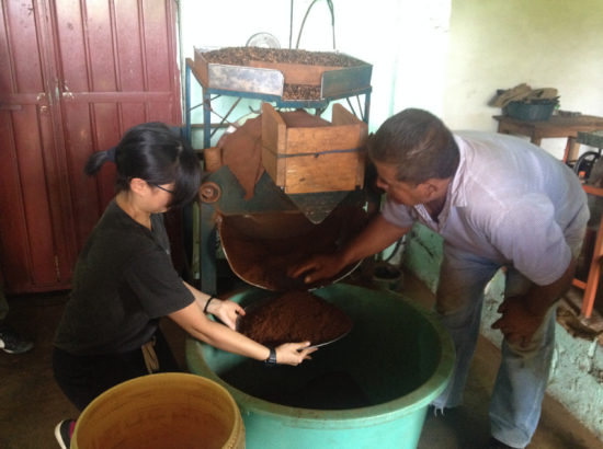 Two people work with a large coffee grinding machine
