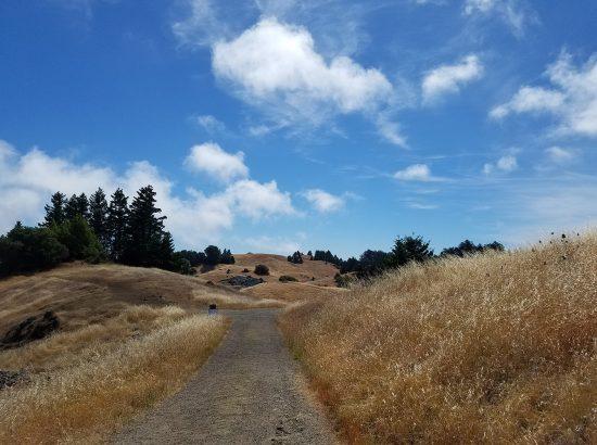 A path cutting through hills