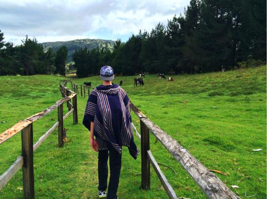 Partner Collin Leonard walks on a trail through a field in Ecuador
