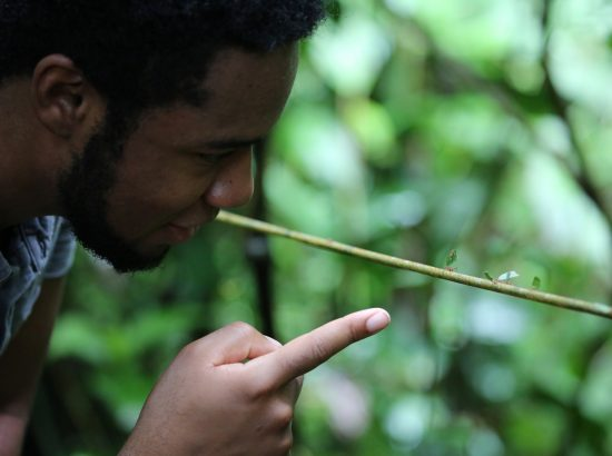 Man's profile to left of image looking intently at ant on stick