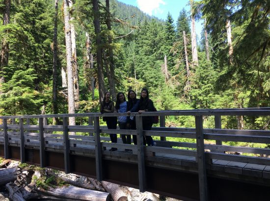 DukeEngage students on a bridge in a forest in Seattle