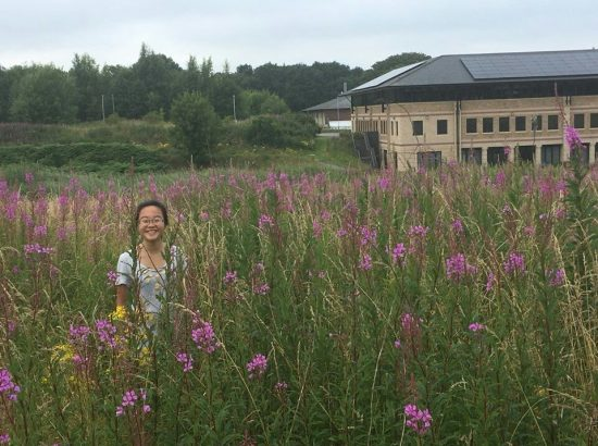 young woman standing in a field of tall grass with a building far in the background