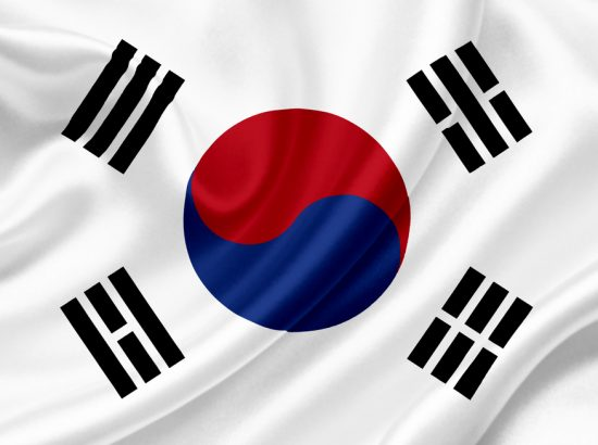 white flag with red and blue circle surrounded by black blocky lines