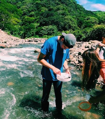 Luke Sallmen (Trinity 2021) and Tiffany Ouyang (Trinity 2021) search for microinvertebrates in the Rio San Luis. Microinvertebrates are key bioindicators that allow scientists to indirectly measure the health of the river.