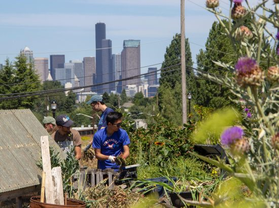 The view of Downtown Seattle from the Beacon Food Forest (Photo credit: Lara Breitkreutz)