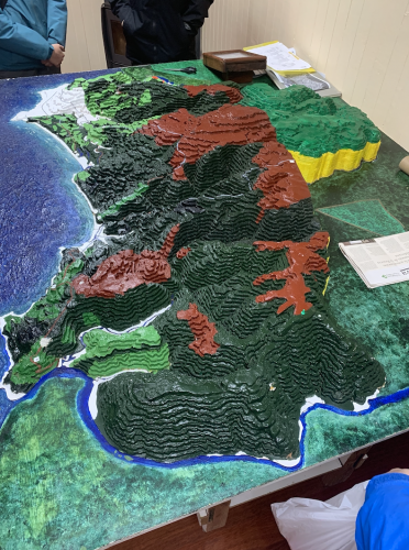 Diorama of the Alerces Costero National Park. Each color represents an area of the park inhabited by a specific tree species.