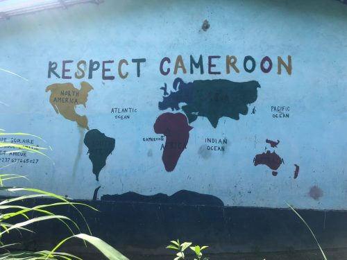 A world map highlighted Cameroon